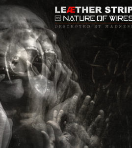 """Nature of Wires / Leather Strip – """"Destroyed By Madness"""""""